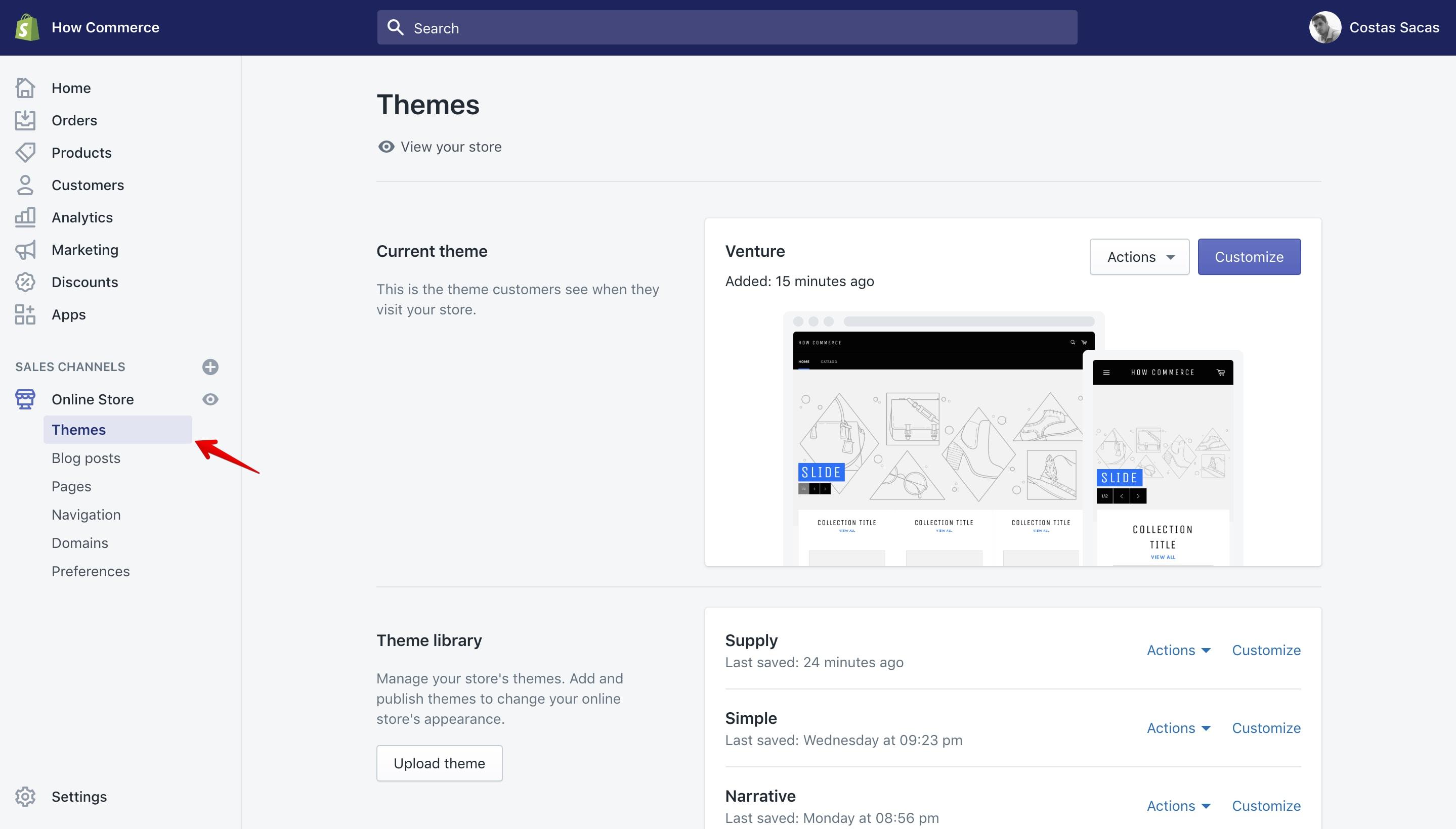 Shopify themes panel.